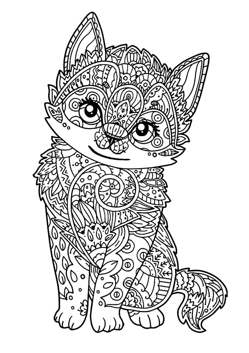 Раскраска Красивый котенок распечатать | Коты, кошки, котята
