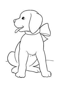 Красивый лабрадор с бантом на шее (Собаки и щенки) разукрашка для печати на А4
