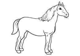 Крепкий конь раскраска распечатать на А4 - Лошади и пони