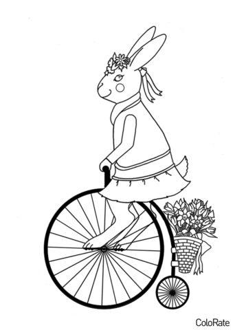 Кролик на ретро велосипеде раскраска распечатать на А4 - Велосипеды
