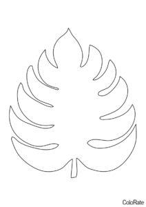 Лист Монстеры (Трафареты листьев) распечатать бесплатный трафарет