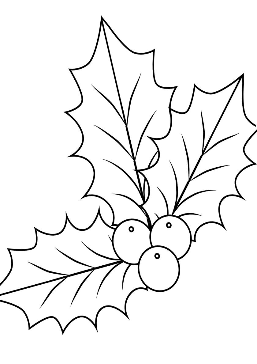 Раскраска Листочки остролиста распечатать | Листья