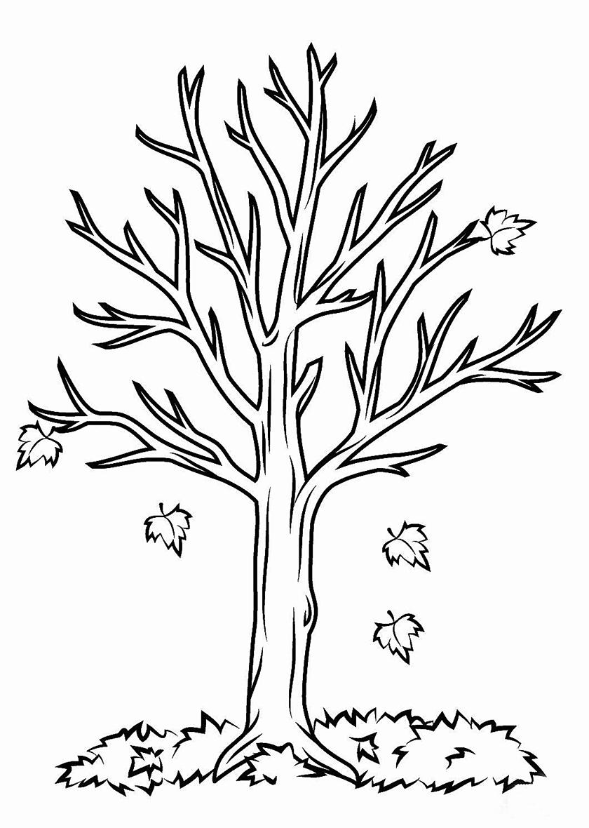 Раскраска Листопад у клёна распечатать | Листья