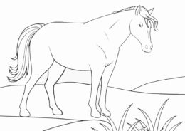 Лошадь на пастбище (Лошади и пони) распечатать бесплатную раскраску