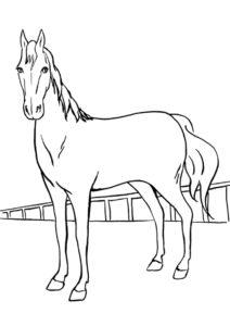 Лошадь на прогулке распечатать раскраску - Лошади и пони