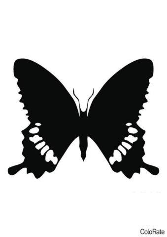 Шаблон Махаон распечатать на А4 - Трафареты бабочек