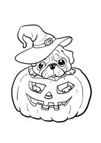 Мопс на Хэллоуин разукрашка скачать и распечатать - Собаки и щенки