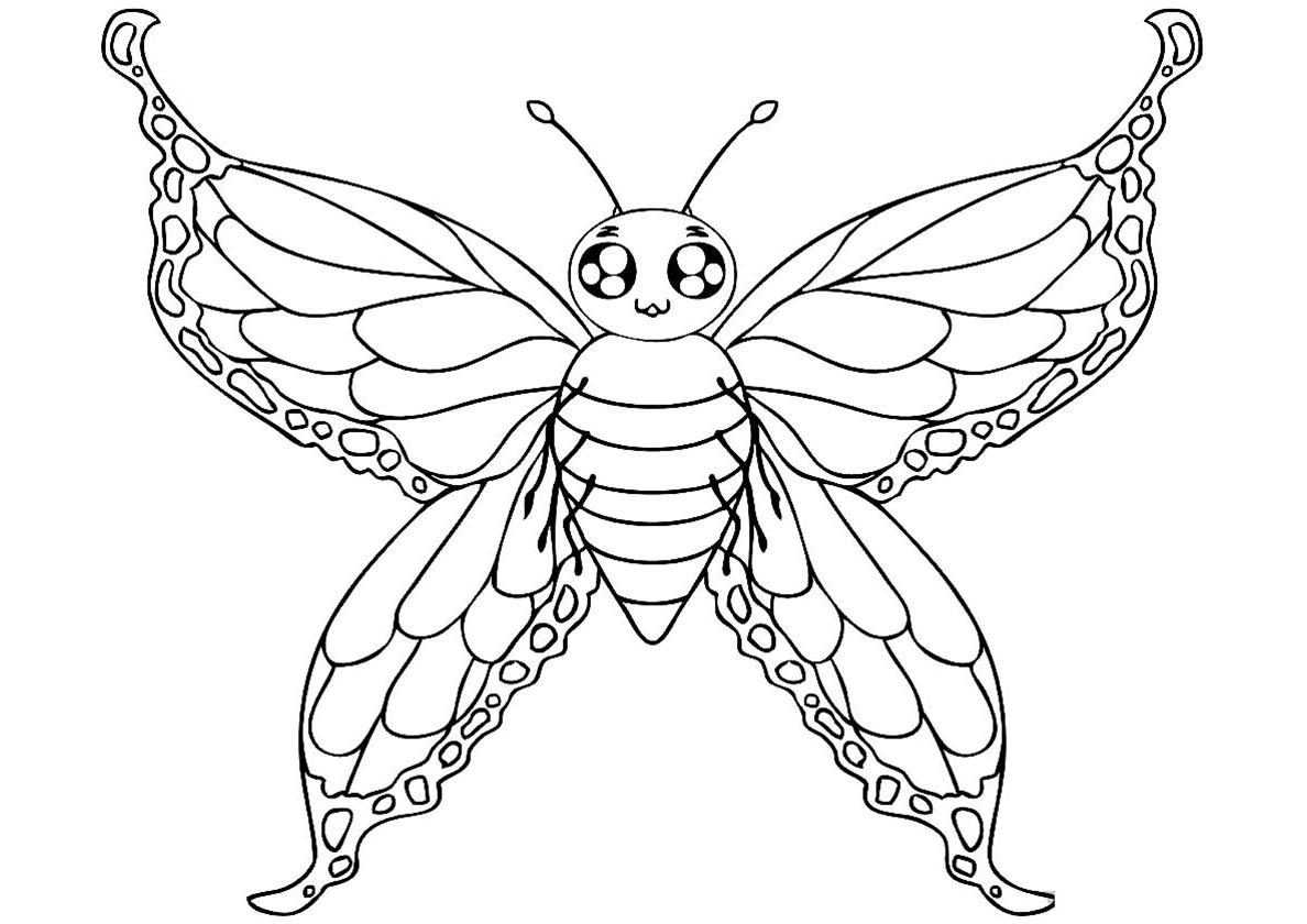 Раскраска Мотылек с прозрачными крыльями распечатать | Бабочки