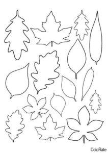 Набор листьев распечатать трафарет - Трафареты листьев