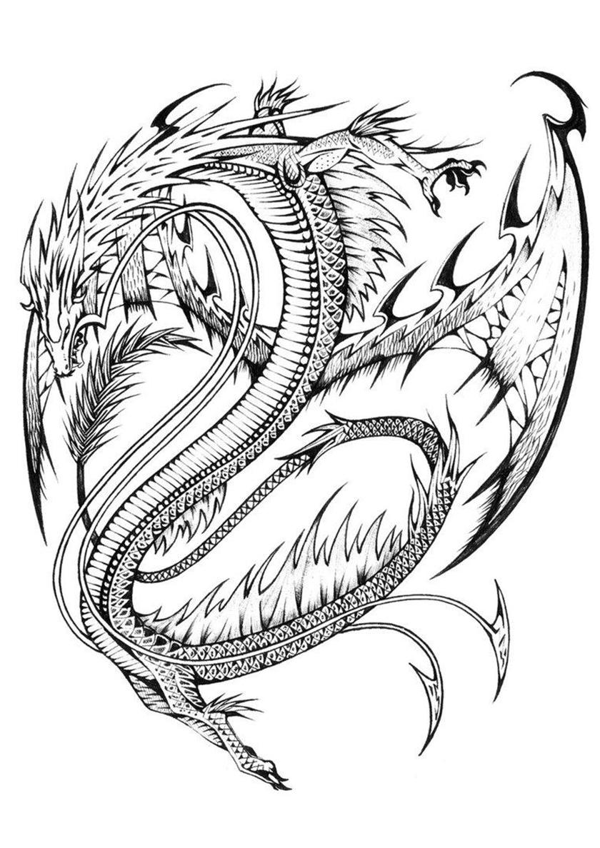 Раскраска Небесный дракон распечатать | Драконы
