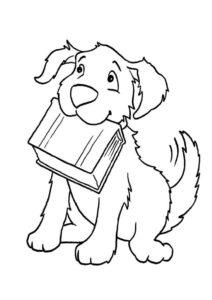 Образованная собака с книгой распечатать раскраску - Собаки и щенки