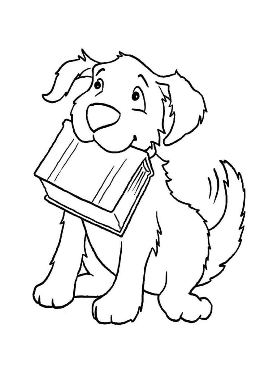 Раскраска Образованная собака с книгой распечатать ...