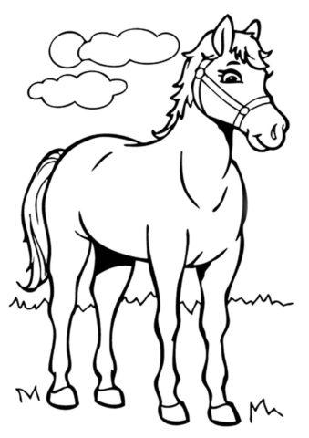 Обыкновенная лошадка - Лошади и пони бесплатная раскраска