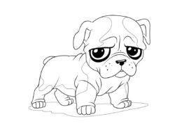 Очень грустный мопс (Собаки и щенки) разукрашка для печати на А4