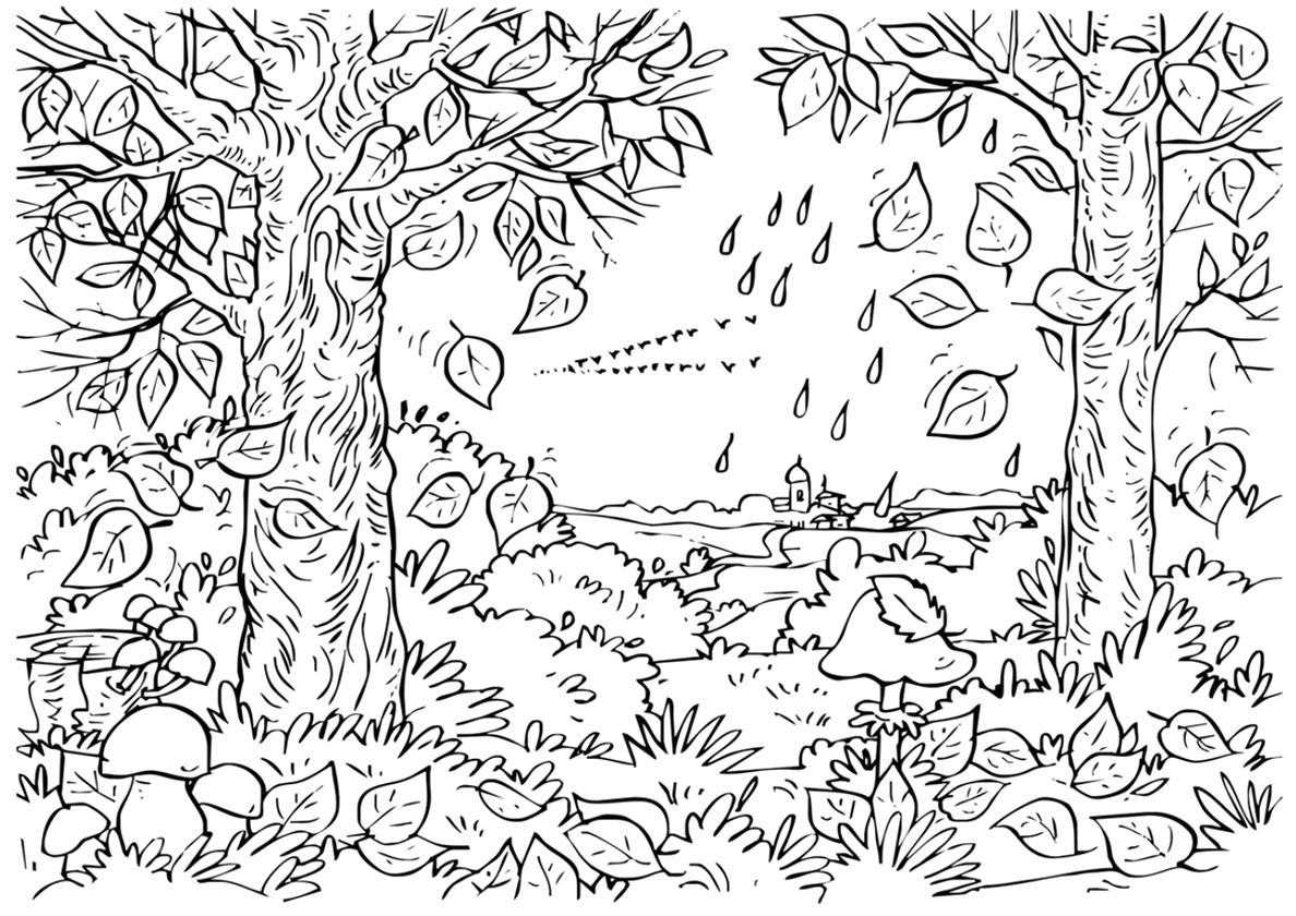 Раскраска Осенний пейзаж распечатать | Осень