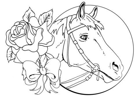 Разукрашка Открытка с конем распечатать и скачать - Лошади и пони