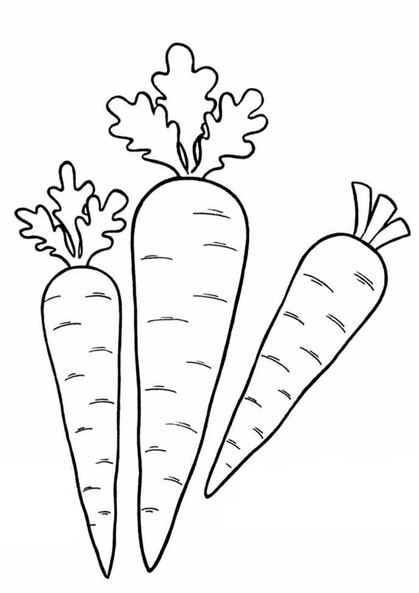 Раскраска Овощи для супа распечатать | Морковь