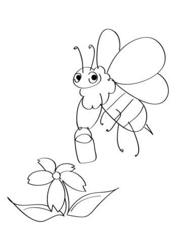 Разукрашка Пчела распечатать на А4 и скачать - Весна