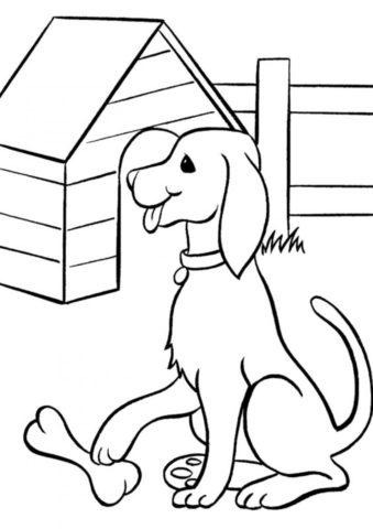 Пёс охраняет свою кость (Собаки и щенки) распечатать раскраску