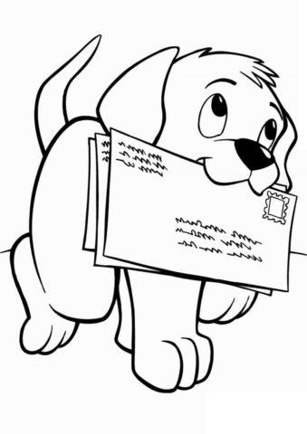 Собаки и щенки распечатать раскраску - Пёс-почтальон
