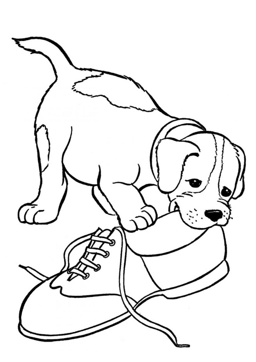 Картинки распечатать про собак