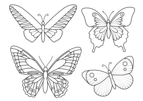 Прекрасные бабочки - бесплатная раскраска