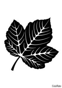 Трафарет Прекрасный листочек распечатать на А4 и скачать - Трафареты листьев