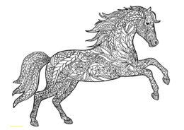 Прекрасный мустанг разукрашка скачать и распечатать - Лошади и пони