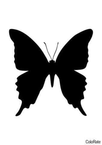 Простой махаон (Трафареты бабочек) бесплатный трафарет на печать