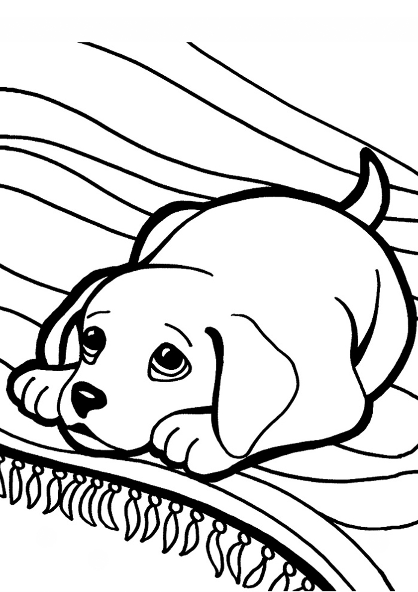 Раскраска Провинившийся пёс распечатать | Собаки и щенки