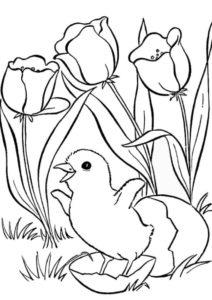 Птенчик вылупился - Весна раскраска распечатать на А4