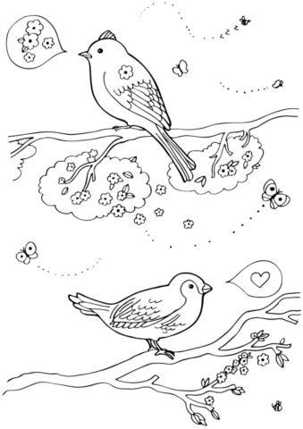 Раскраска Птицы на ветках распечатать | Весна