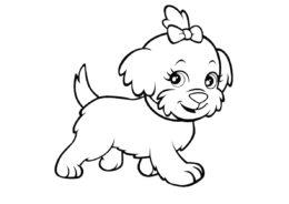 Разукрашка Пушистая собачка с бантиком распечатать на А4 и скачать - Собаки и щенки