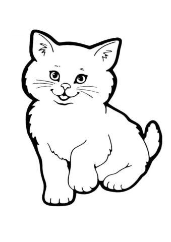Бесплатная раскраска Пушистик распечатать и скачать - Коты, кошки, котята