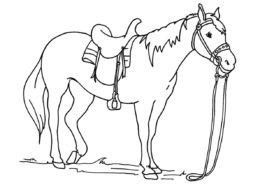 Разукрашка Работящая лошадь распечатать и скачать - Лошади и пони