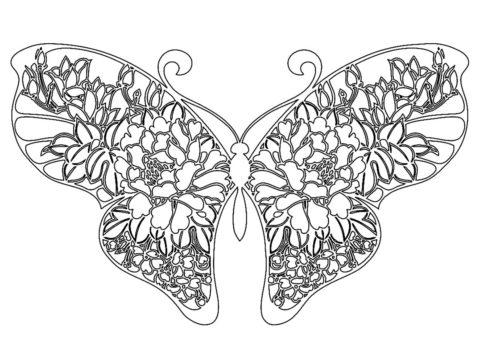 Раскраска Расписная бабочка распечатать на А4 и скачать - Бабочки