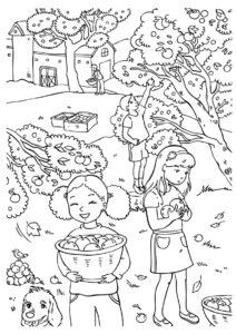 Сбор яблок в саду - Осень бесплатная раскраска