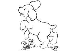 Щенок на лужайке распечатать раскраску - Собаки и щенки