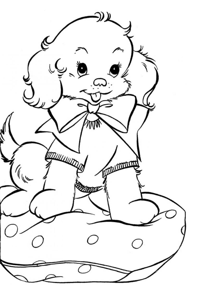 Раскраска Щенок на мягкой подушке распечатать | Собаки и щенки