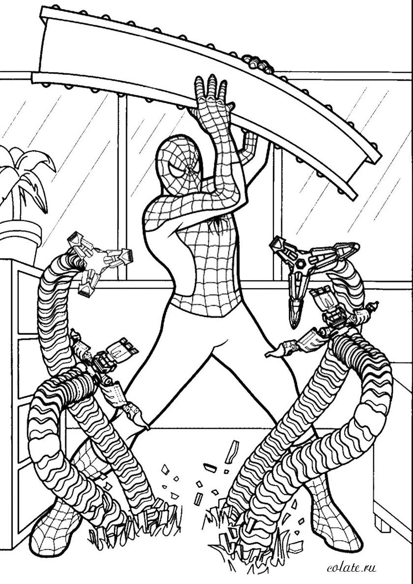 Раскраска Человек-паук и Доктор Осьминог распечатать ...