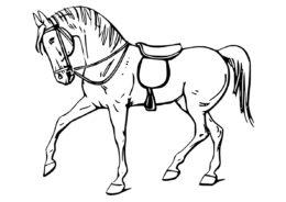 Раскраска Сильный мустанг распечатать и скачать - Лошади и пони