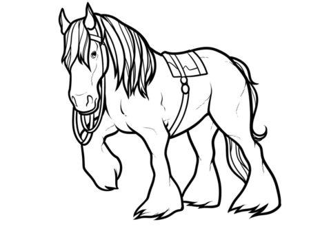Разукрашка Симпатичный пони распечатать на А4 и скачать - Лошади и пони