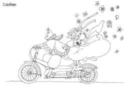 Сказочные кот и кошечка на велосипеде - Велосипеды раскраска распечатать на А4