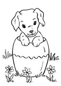 Разукрашка Собачка выглядывает из вазы распечатать на А4 и скачать - Собаки и щенки