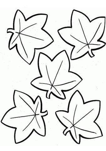 Стилизованные листья клёна распечатать разукрашку бесплатно - Листья