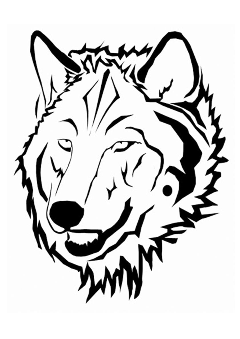 Раскраска Тигровый волк распечатать | Волки