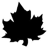 Трафареты листьев для вырезания распечатать на А4