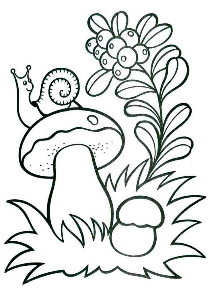 Раскраска Улитка сидит на грибочке распечатать | Лето