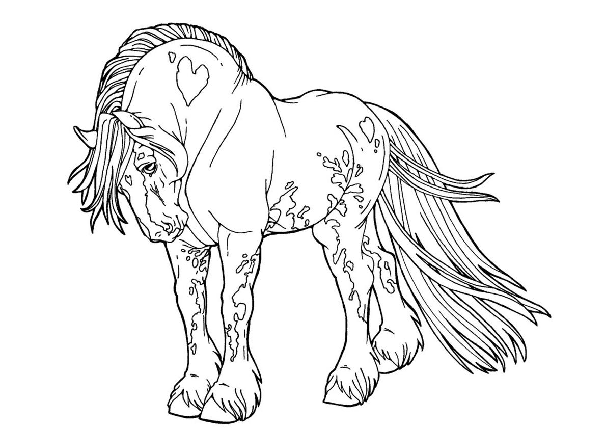Раскраска Уникальный мустанг распечатать | Лошади и пони
