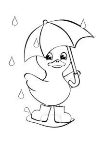 Утенок под дождем (Осень) раскраска для печати и загрузки